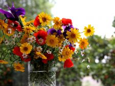 Invata cum sa transformi florile uscate intr-un decor romantic pentru casa ta!