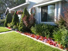 Pune in valoare intrarea in locuinta prin frumusetea plantelor si a florilor