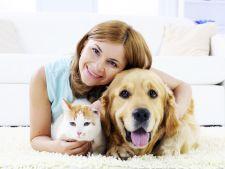 Esti pregatit pentru un animal de companie? 4 semne care arata ca DA