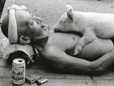 Poveste de ferma: Un barbat are o legatura speciala cu 1200 de porci!