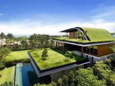 5 avantaje ale unui acoperis verde