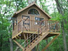 Rasfata-ti copilul! Invata cum sa-i construiesti o casa in copac in gradina!