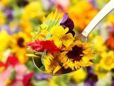 Buruieni sau delicii culinare? 7 plante invadatoare din gradina delicioase in farfurie