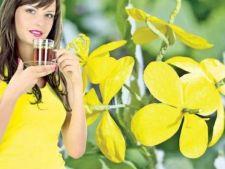 Beneficiile ceaiului de rostopasca: planta miraculoasa de la coltul casei!