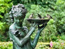 7 sfaturi pentru  montarea hranitorilor de pasari in gradina ta. Iata ce ai de facut!