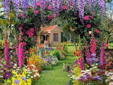 Gradina de vara: Ce bulbi de flori sa alegi si cum ii plantezi corect!
