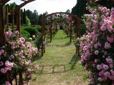 Cele mai frumoase gradini: Gradina Botanica din Iasi, comoara florala a Romaniei