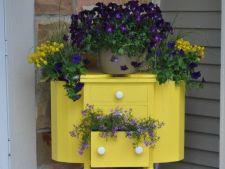Ghivecele de flori extravagante, puncte focale in gradina ta