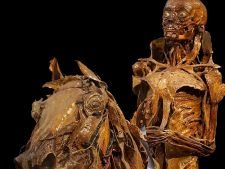 Top 6 muzee ciudate din lumea intreaga. Expozitii permanente care iti dau fiori!