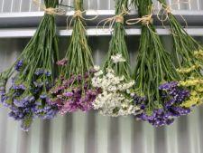 6 decoratiuni extraordinare realizate din flori uscate