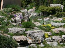 Gradina perfecta: 6 trucuri simple pentru a transpune imaginea naturii intr-o gradina de piatra!