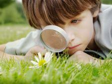 Vacanta de vara: Activitati distractive care dezvolta inteligenta copilului