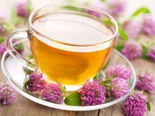 Beneficiile ceaiului de valeriana: Trateaza insomniile, depresia si te ajuta sa renunti la fumat!