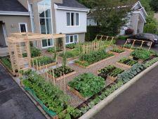 Amenajarea gradinii: Cum sa dai stil unei gradini de legume!