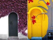 12 usi originale pentru intrarea in casa.Ce model te inspira?