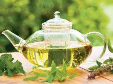 Cum iti poti cultiva propriile plante pentru ceai
