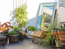 5 idei pentru o terasa verde amenajata la tine acasa