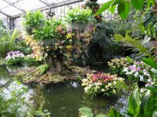 Cele mai frumoase gradini: Kew Gardens din Londra, un paradis al Regatului Unit