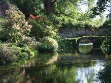 Cele mai frumoase gradini: Il Giardino di Ninfa, un leagan al romantismului pur