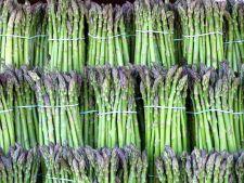 Sparanghelul, o leguma exotica usor de cultivat