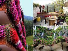 6 gradini de vis pe care le poti amenaja in balconul tau
