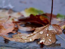 Ploile si frigul revin in forta. Vezi ce zone din tara vor fi  afectate!