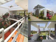 Casa florilor: lux in stil minimalist