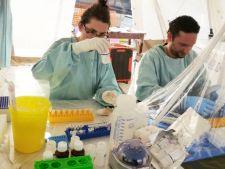 Ebola ucide selectiv! Cine ii cade cel mai usor victima