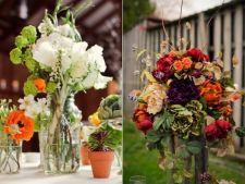 6 aranjamente florale superbe care vor anima atmosfera din curte sau din casa