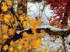 Iarna bate la usa: weekendul vine cu ninsori si temperaturi in scadere
