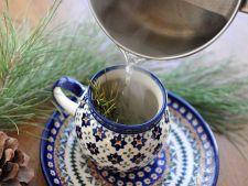 Beneficiile ceaiului din muguri de pin: Iata de ce este bine sa il bei toata iarna!