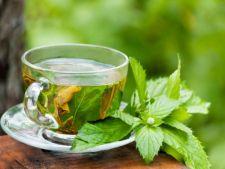 Ceaiul verde, cel mai bun medicament natural pentru sanatatea dintilor si a gingiilor