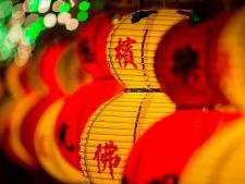 Intram in Anul Nou chinezesc. Afla ce schimbari majore aduce Anul Oii de lemn