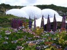 O lume vrajita: Marile Gradini din Cornwall