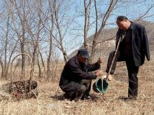 Emotionant! Un orb si un barbat fara maini au plantat 10.000 de copaci!