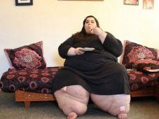 amber grasa