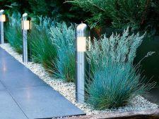Idei de amenajare a unei gradini in culoarea argintului