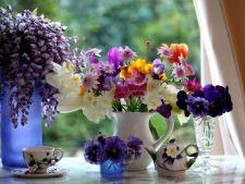 Cum te poti bucura mai multa vreme de un buchet cu flori