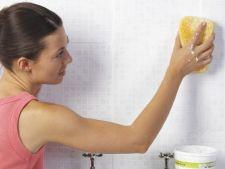 Cum scapi de mucegaiul din casa. 8 sfaturi utile