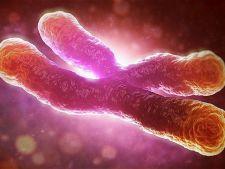 Un test iti arata cu 13 ani inainte daca te poti imbolnavi de cancer