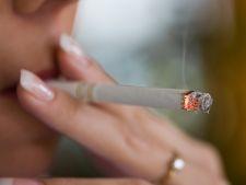 Fumator Hepta