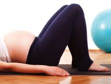 sport gravida
