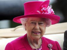 hepta Regina Elisabeta