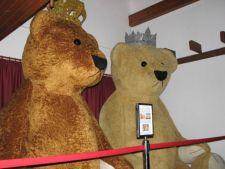 Primul muzeu al ursuletilor de plus din Romania. Ursul printesei Charlotte, printre exponate