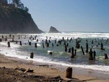 oregon padure plaja bantuita
