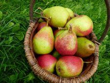 Fructul care tine la distanta kilogramele! Iata ce trebuie sa mananci zilnic