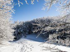Cea mai scazuta temperatura din tara: -29,5 de grade Celsius!