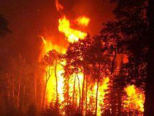Incendiu de proportii in Buzau! Focul, extins pe 5 kilometri!