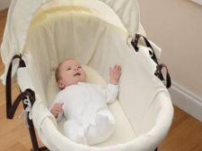 Cum alegi cosul potrivit pentru bebelus pentru a face pe toata lumea fericita