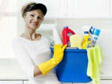 curatenie casa